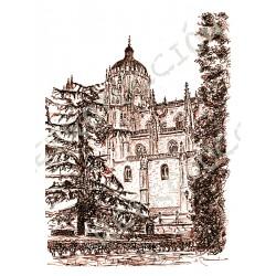 Catedral Nueva desde Anaya.  Salamanca