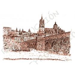 Catedral y Puente Romano.  Salamanca
