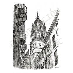 Catedral Nueva desde el Rectorado.  Salamanca